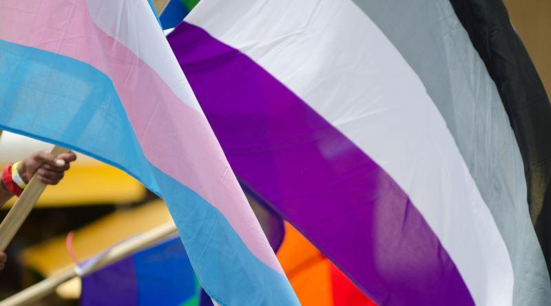 Aseksuel Birinin Gozunden Bircok Insanin Hayret Ettigi
