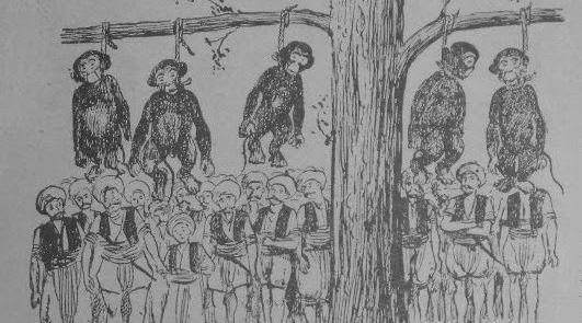 Osmanlı Döneminde Yüzlerce Maymun Neden İdam Edildi?